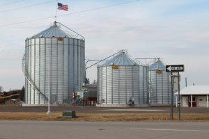 Distel Grain Cannon photo 11